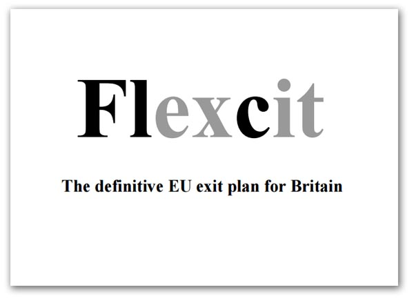 000a Flexcit-026 graphic.jpg