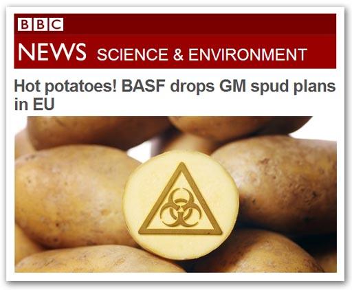 BBC 002-gmf.jpg