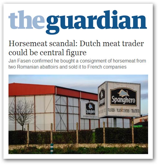 Guardian 013-fas.jpg