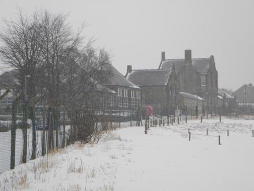 Snow 023-003.jpg