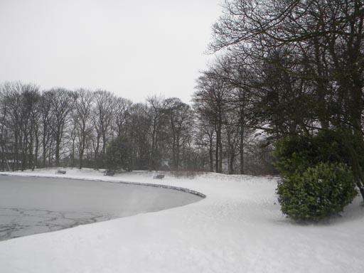 Snow 023-010.jpg