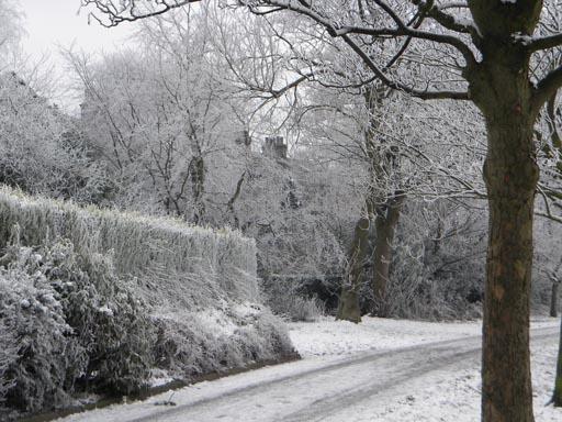 Winter 017-par.jpg